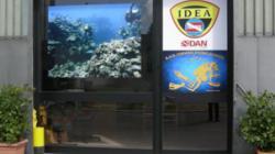 Diving su Pugliabnb - Portale turistico Puglia senza intermediazione - Corvino Diving School - Monopoli -  Su Pugliabnb trovi tutti i migliori B&B in Puglia - I migliori B&B in Puglia solo su Pugliabnb