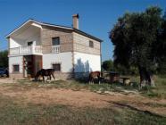 Gio Horses B&B a San Nicandro Garganico-B&B in Puglia su Pugliabnb-Portale turistico della Puglia senza intermediazione-Su Pugliabnb trovi tutti i migliori B&B in Puglia