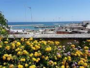 Le Terrazze B&B a Bisceglie-B&B in Puglia su Pugliabnb-Portale turistico della Puglia senza intermediazione-Su Pugliabnb trovi tutti i migliori B&B in Puglia