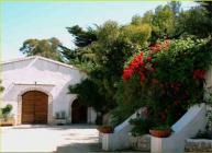 A Vieste nel Parco Nazionale del Gargano, una grande tenuta agricola offre appartamenti - ristorante tipico - vendita diretta di vino e olio - tiro con l'arco - mountain-bike; il tutto a pochi metri dal mare.